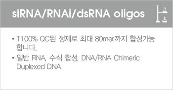 siRNA RNAi dsRNA oligos