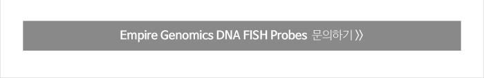 dna fish probe