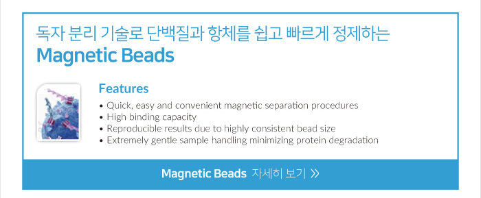 Magnetic_bead